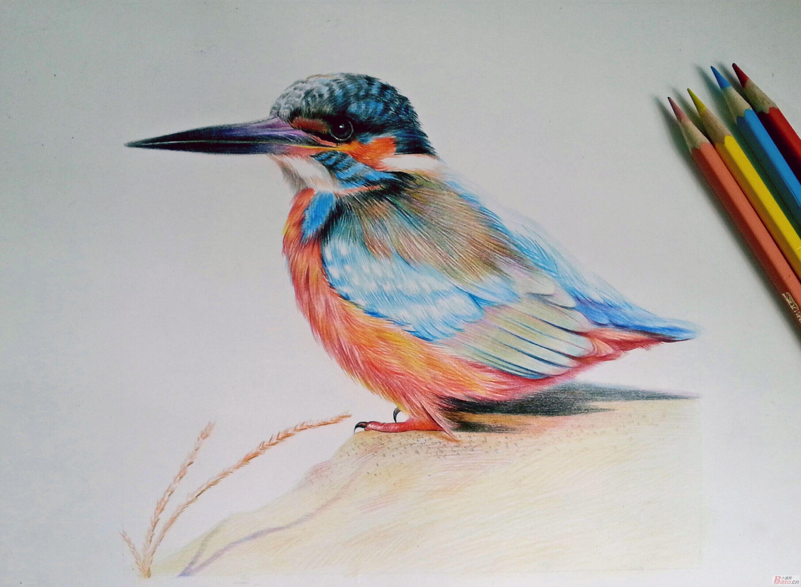 彩色铅笔绘画 - 色影一界
